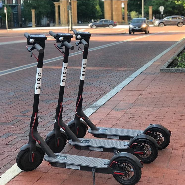 Find Apartment Near Me: It's A Plane, No It's A Bird: Electric Scooters For Rent