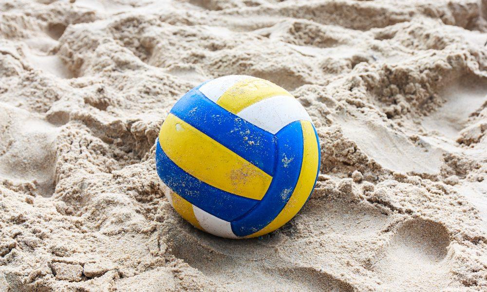 Endless Summer: Update on Woodlands Backyard volleyball ...